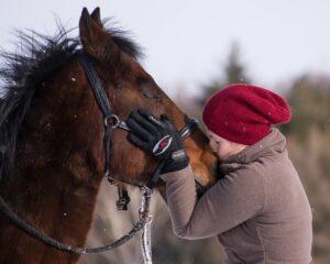 Ich habe eine besondere Bindung zu Pferden